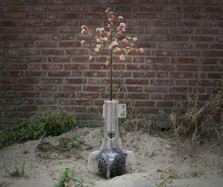 Bioplastic Planter 1